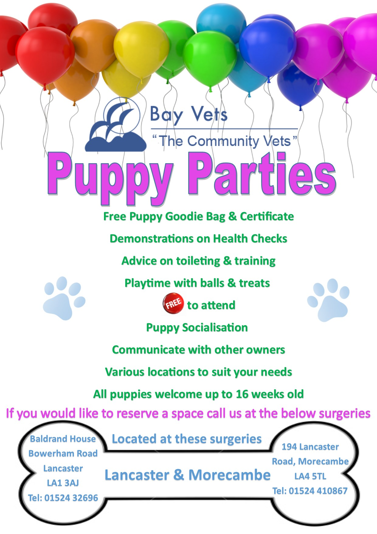 Puppy-Party-Poster-Shops-NEW